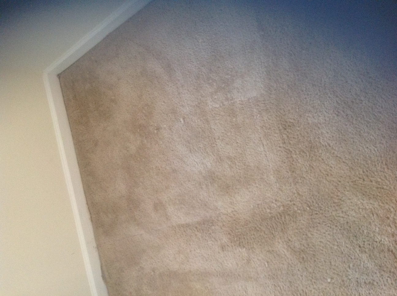 Carpet After Repairs