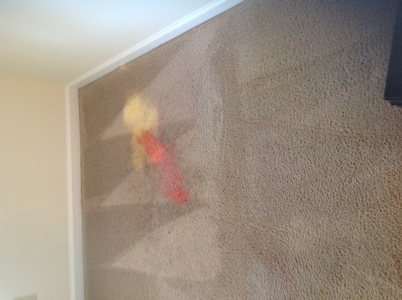 Carpet Condition Prior to Repairs